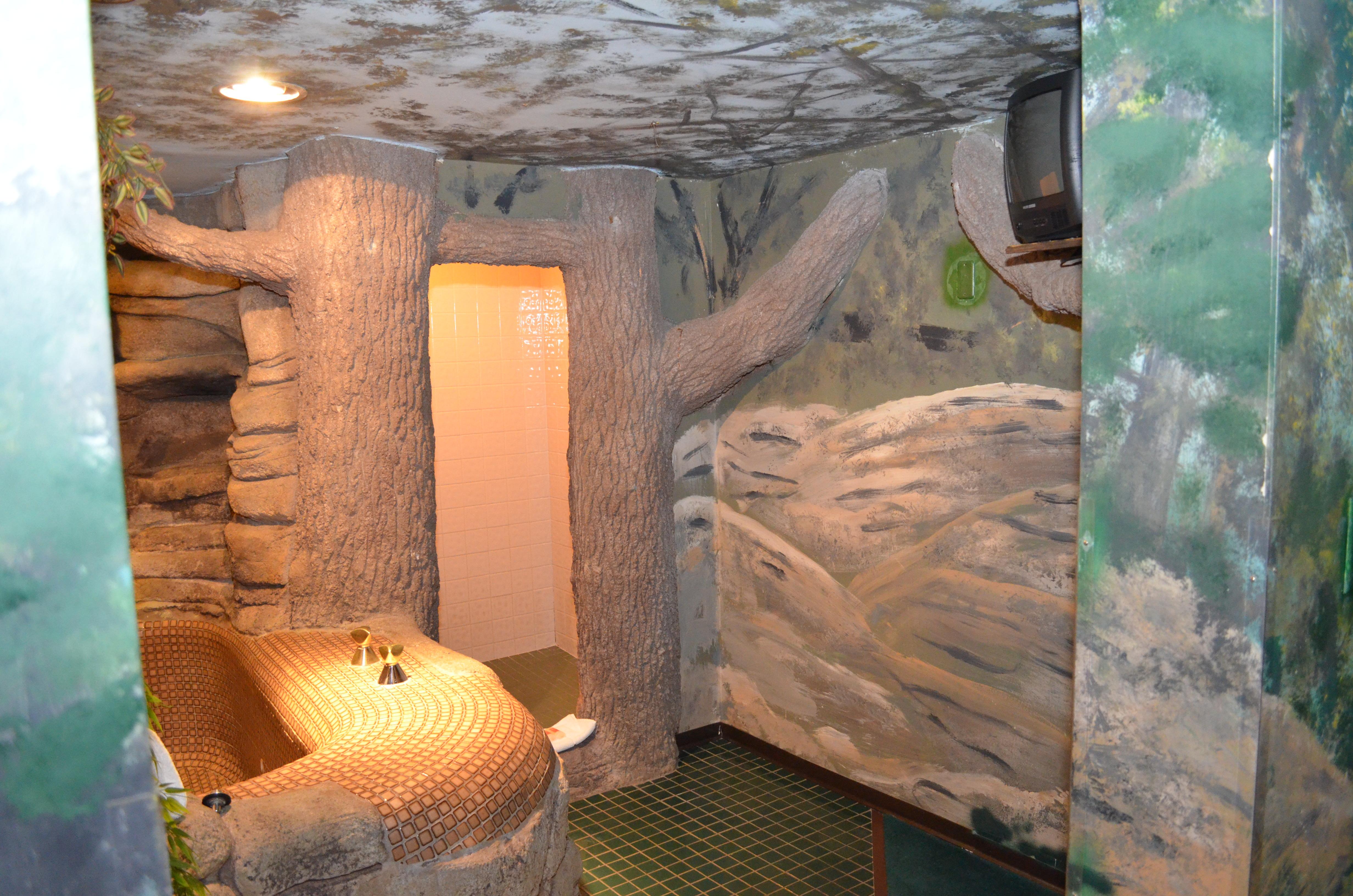 Sherwood Forest Greenwood Fanta Suites Com
